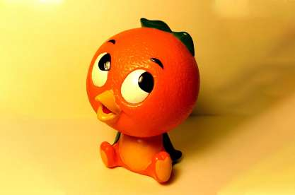 The Florida Orange Bird